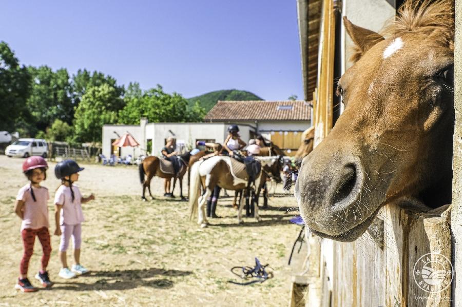 Poney Club Larzac et Vallées Elevage du Durzon
