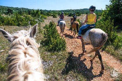 Domaine de Gaillac - balades à cheval, ©V. Govignon - OT Larzac et Vallées