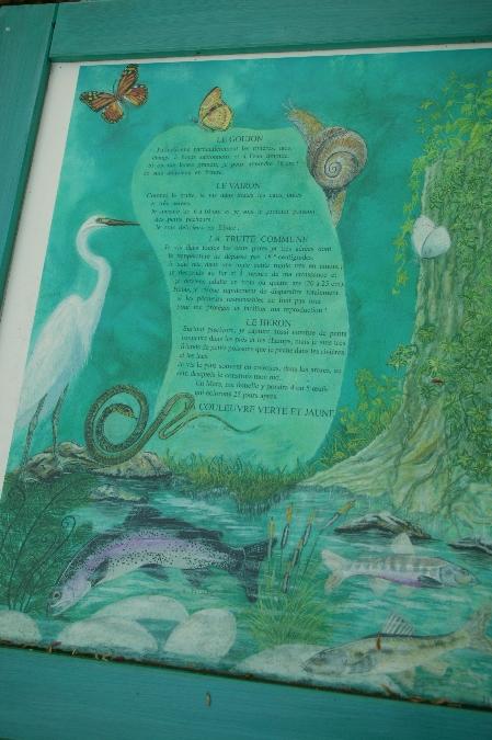 Enluminure du monde aquatique, au fil de l'eau Brommat
