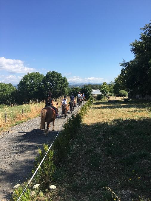 Ranch du Barrez: Poney