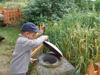 Découverte de graines et de plantes sur Sentier de l'imaginaire à Thérondels
