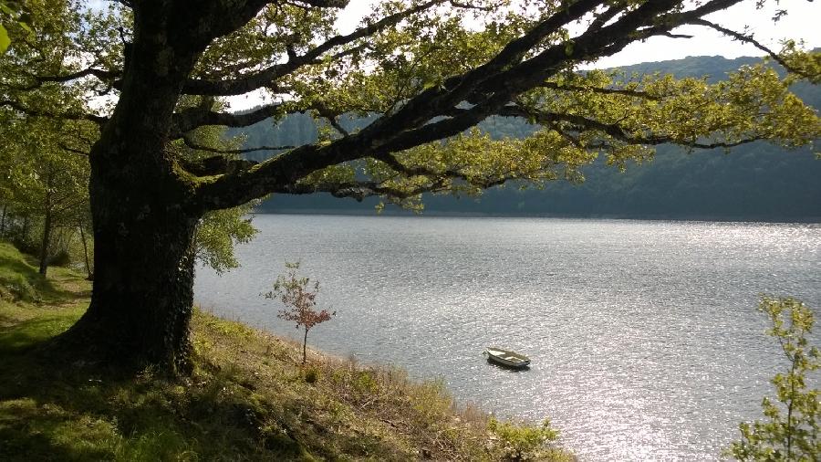 Vu le lac de Sarrans, terrasse du Chalet du Lac