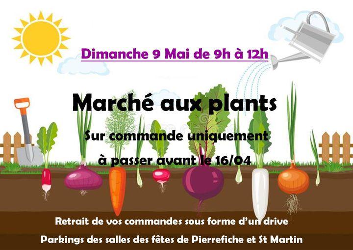 Marché aux plants à Pierrefiche d'Olt