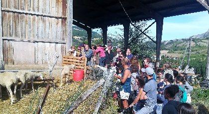 Ferme de Pinet, visite d'un élevage de brebis en agroécologie, La Ferme de Pinet, visite d'un élevage de brebis en agroécologie