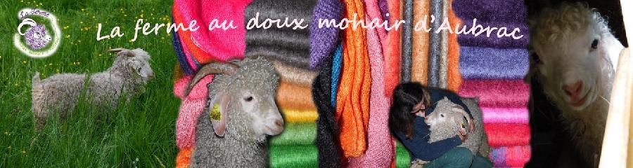 La ferme au doux Mohair d'Aubrac