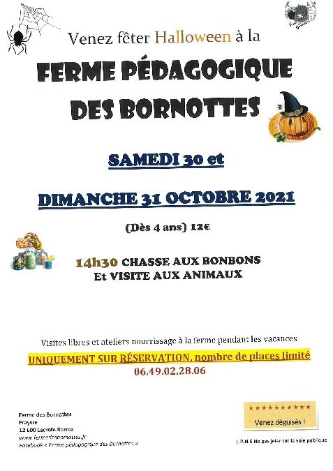 Halloween à la ferme des Bornottes - COMPLET