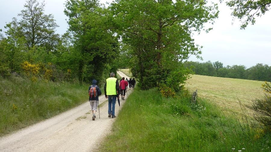 Marches et randonnées avec les Marcheurs du Pays Rignacois