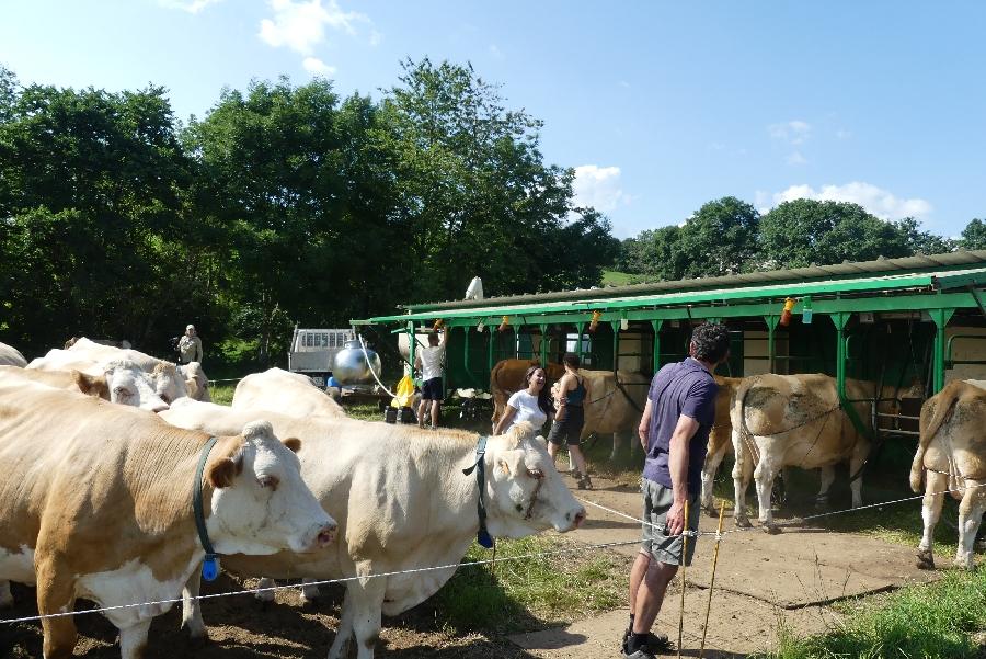 Visites de ferme avec la Coopérative Jeune Montagne à Laguiole