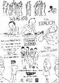 Festival Blues en Aveyron -Trophées du Blues !