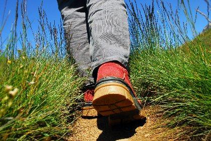 Journée annuelle d'entretien des chemins de randonnée