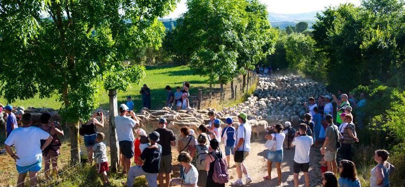 Soirée des Bergers - Repas à la ferme Seguin à Blayac