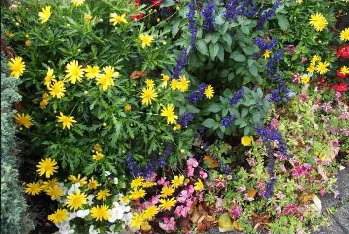 Fleurissement du village - Cruéjouls