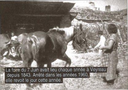 Foire du 7 juin à Veyreau