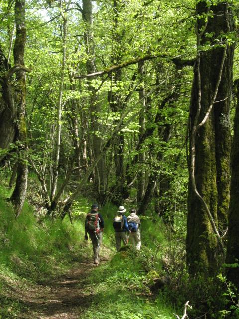 Randonnée à la journée à Soulages-Bonneval et Lac des Galens
