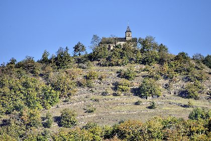 Parcours Trail Le Grand-Mas n° 8
