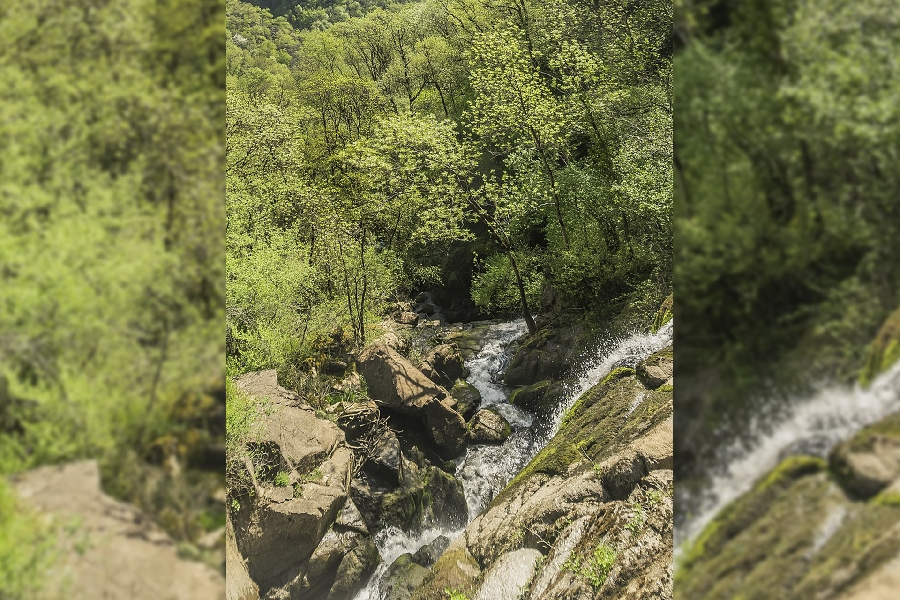 Parcours Trail Polissal n° 15