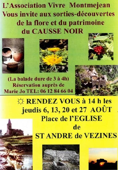 Sorties découvertes de la flore et du patrimoine du Causse Noir