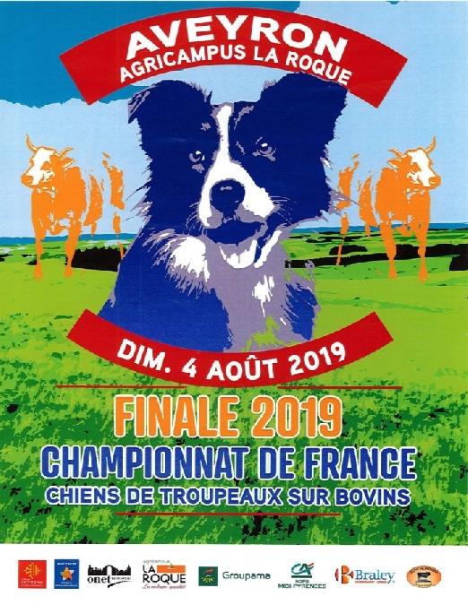 Championnat de France de chiens de troupeaux sur bovins 2019