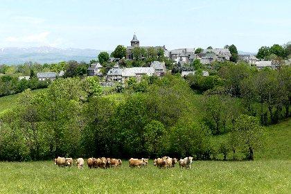 Village de Vines, S.MARTY