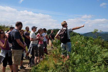 MILLEFEUILLES - Education à l'environnement et Randonnées Nature