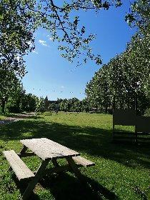 Aire de pique-nique à Coussergues, Office de Tourisme des Causses à l'Aubrac