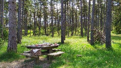 Aire de pique-nique du bois de la Douzette, OFFICE DE TOURISME LARZAC VALLEES