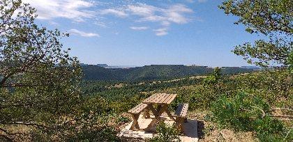 Aire de pique-nique à la Novis , Office de Tourisme des Causses à l'Aubrac