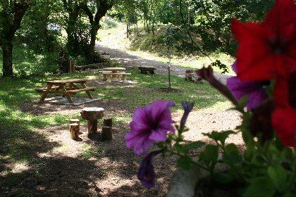 Aire de Pique-nique - Fontaine du Théron à Buzeins , Office de Tourisme des Causses à l'Aubrac