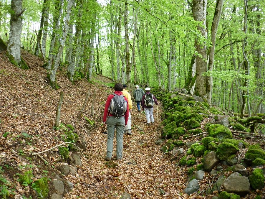 Randonnée : de Mur-de-Barrez à Thérondels (et retour)