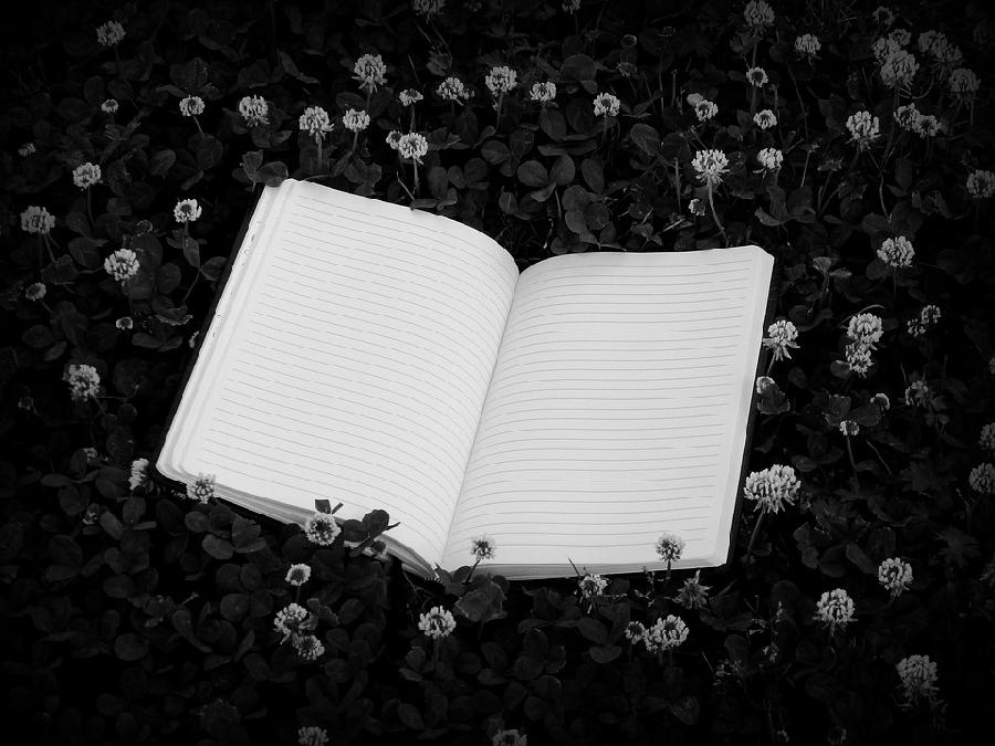 Balade écriture : une histoire naturelle