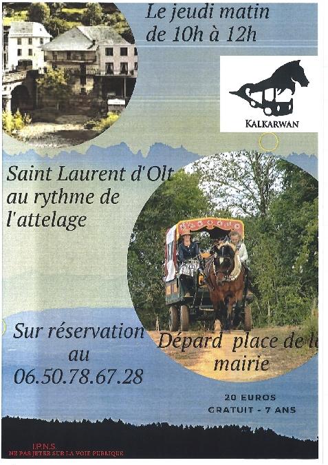F'Estivales des Causses à l'Aubrac : L'Aveyron au rythme d'un attelage avec le club Kalkarwan