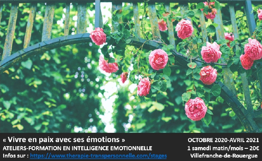 Ateliers - Vivre en paix avec ses émotions