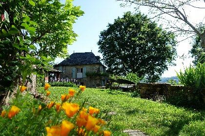 la Forêt souriante - Gîte Albizia, La Forêt Souriante
