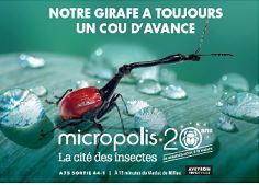 - de 4 ans Visites de MICROPOLIS - Novembre 2020  ©OFFICE DE TOURISME DE PARELOUP LEVEZOU