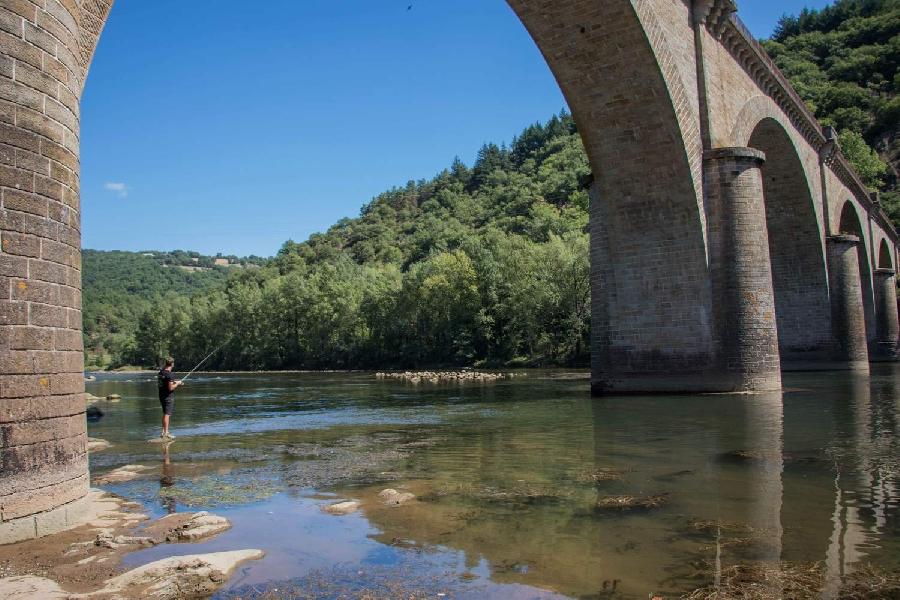 Le Tarn au pont des Hirondelles ou pont de Girbes (lâchers de truites)
