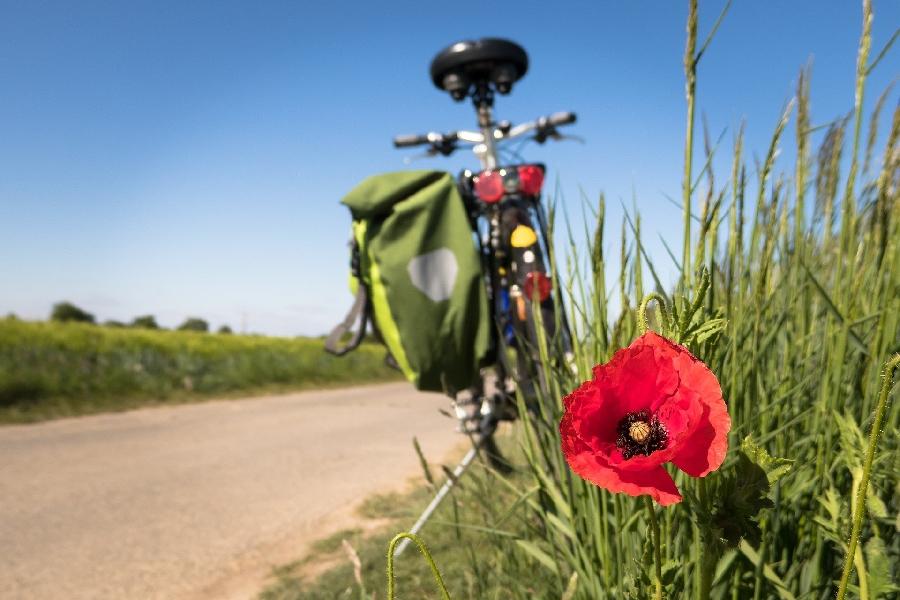 Cyclotourisme : Le Pays Decazevillois - Vallée du Lot