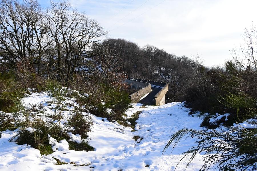 Barrage de Saint Amans (lâchers de truites)