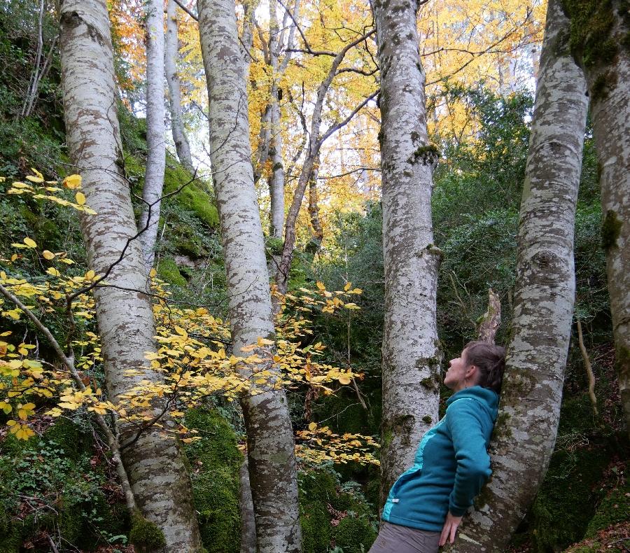 Balades bien-être dans la nature