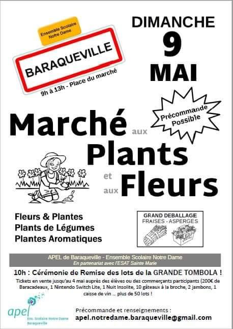 Marché aux plants et aux fleurs