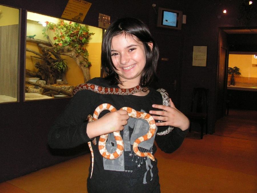 Stage découverte enfant Soigneur animalier