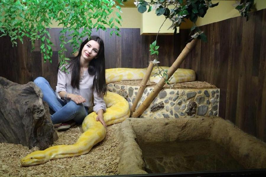 Stage découverte Adulte Soigneur animalier