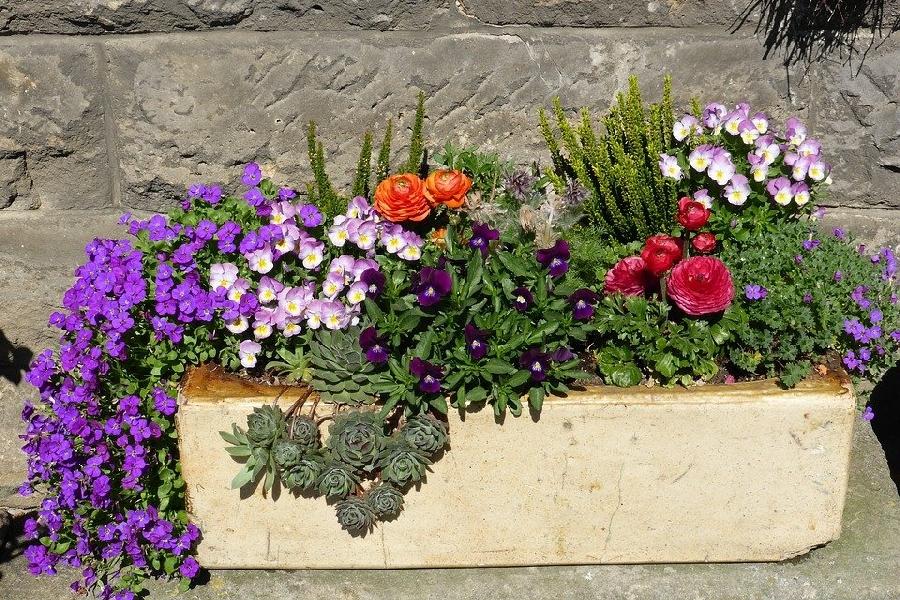 Concours de Maisons Fleuries