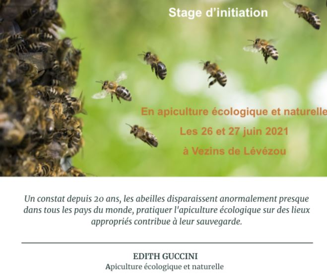Stage apiculture (particuliers)