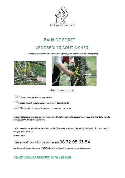 BALADE - Bain de forêt