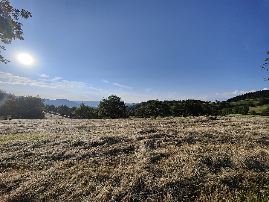 Trail d'Aqui - Le Nayrac