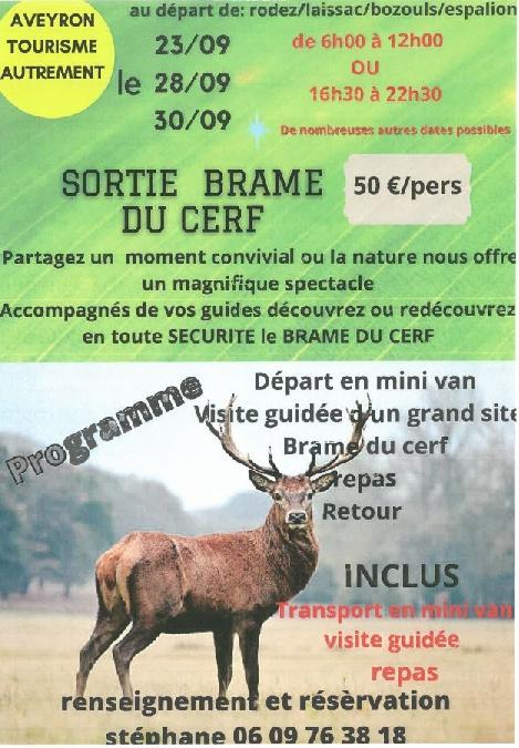 Sortie Brame du Cerf au départ de Rodez-Espalion-Laissac-Bozouls