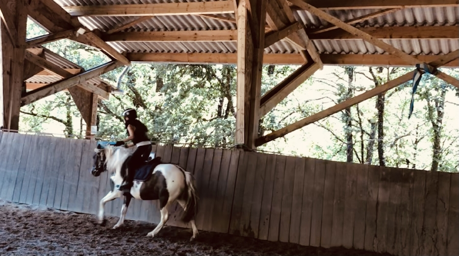 Stages cheval/poney pour Halloween